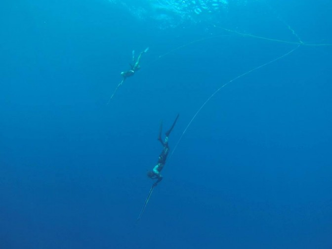 Freediving holiday in the Maldives