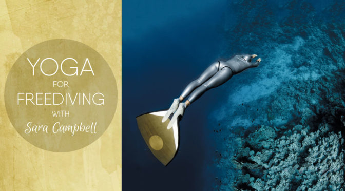 Yoga for Freediving by Sara Campbell