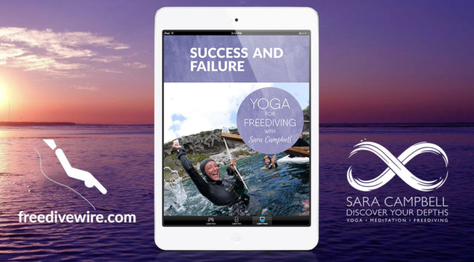 Win a free copy of Success and Failure by Sara Campbell
