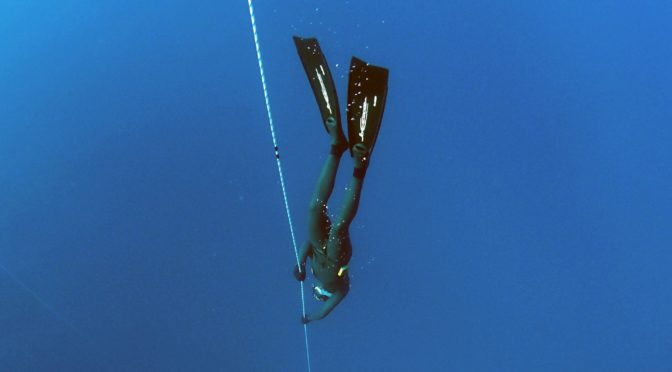 The surprising truth about your wetsuit, and staying warm while freediving